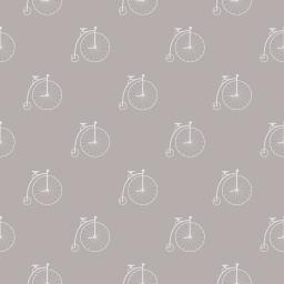 Bicycle - tortora