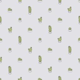 Cactus - seta